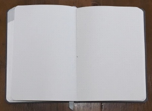 Baron Fig Planner Notes Section
